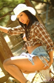 Cowgirl In Plaid Picture